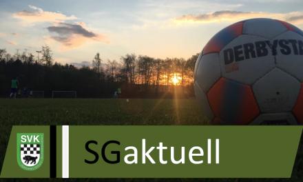 Saison 2018/2019: Trainerwechsel bei der Ersten